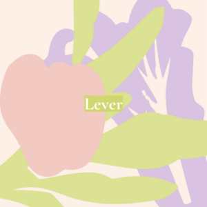 Lever